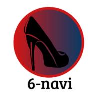 6-navi
